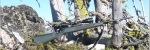 Zeiss Rapid-Z Reticle Review - Ryan Hatfield